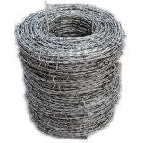 塀(BW)のための中国の製造業者によって電流を通される有刺鉄線