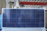 Poli comitato solare 100W per il sistema solare dell'indicatore luminoso di via