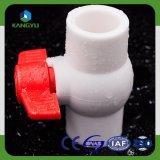 Valvola a sfera di plastica di PPR con gli accessori per tubi di PPR