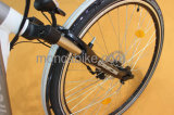 Cer-populärer faltender Fahrrad 20inch Shimano Platte-Bremsen-Silber-faltbares Fahrrad-einfacher im Freienroller