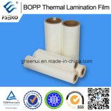Film de laminage thermique BOPP + EVA pour impression offset - 24mm brillant et mat
