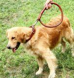 2018 Kabel Van uitstekende kwaliteit van de Leiband van de Hond van het Huisdier van het Leer de Nieuwste Ronde voor de Kraag van Leash& van de Hond