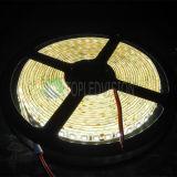 Luz de tira del alto brillo LED (240LEDs/M) con la alta calidad SMD2835LED