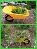 Carrinho de mão de roda modelo do jardim de Europa (WB6414)