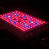 Ir-Innenwasserkultursystem 900W LED wachsen Pflanzenlicht
