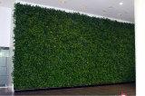 Piante di alta qualità e fiori artificiali della parete verde Gu-Wall102988837
