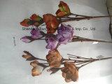 エヴァの文書によってなされたArtificiaの花はすべての人クラフトを作った