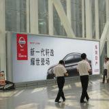 De grote Lichte Doos van het Glas van de Luchthaven van de Grootte Binnen reclame Aangemaakte