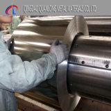 Ausbildungsprogramms-elektrolytisches Hauptweißblech für das Stahlmetallverpacken
