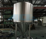 systeem van de Brouwerij van de Brouwerij 20bbl 3vvessel het Kant en klare (ace-fjg-3H)
