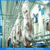De automatische Machine van de Slachting voor het Varken en de Schapen van het Vee van de Kip op de Algemene Vergadering van het Gevogelte