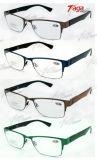 Il metallo Eyewear di acciaio inossidabile incornicia la cassa di vetro (WG3820)