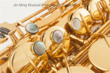 Melhor qualidade de Alto Saxofone Selmer similares, electroforese