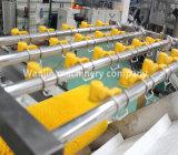 Frutos de sumo de vegetais a linha de processamento de tomada de Lavagem
