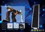 Iluminación inteligente sensor de movimiento PIR todo-en-uno de los LED lámpara solar calle