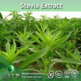 Общее Steviol гликозиды 80% основную часть чистого Stevia извлечения