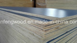 SGS Cetificate HPL Board (1220*2440mm)