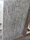 Rosa bianca Granite Stone Countertop per Kitchen, Bathroom