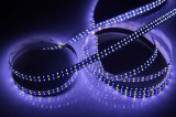 Свет прокладки рядка SMD3014-240-Double, декоративный свет, свет предпосылки