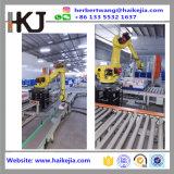 Sistema automático de Palletizer robótica