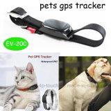 Perseguidor do GPS do animal de estimação com posição real do mapa (EV-200)