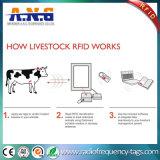 Le passif d'IDENTIFICATION RF du bétail LF étiquette la marque d'oreille animale d'IDENTIFICATION RF ISO11784 - ISO11785