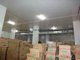 Integração personalizada de Alta Capacidade de armazenamento a frio para a produção de alimentos congelados e fábrica de processamento
