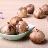 Solo aglio nero di potere nutrizionale per culinario