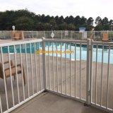 Recinzione ricoperta colore per la piscina