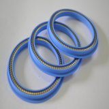 Carbonio Filled PTFE Spring Energized Seals per Valve