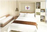 소파 Fj를-72와 Sepsion 머피 벽 침대 접이식 침대 현대 침대