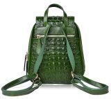 PU рюкзак из натуральной кожи Fashion Lady рюкзак женщин рюкзак Designer рюкзак мини-рюкзак (WDL0599)