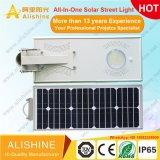 Luz de calle solar ajustable integrada del jardín de la iluminación al aire libre caliente LED de la venta con un mando más a distancia