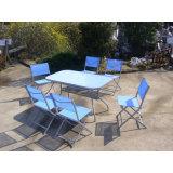 Jardin meubles de patio de salle à manger avec 6 chaises (FS-1101+ FS-5112)