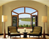 Storm Window /Picture Window/Casement Window with Fly Screen