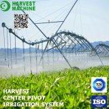 Systeem van de Irrigatie van de Spil van het Centrum van de goed-distributie het Automatische voor Landbouw