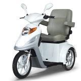 500W Brushless Elektrische Autoped Met drie wielen van de Handrem