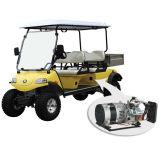 Automobile/carrello/Buggy alzati elettrici, facente un giro turistico con il generatore ibrido