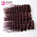 安いRemyの毛の緩い波の最もよい価格の赤いペルーの人間のバージンの毛