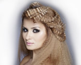 O projeto clássico de Professionjal Scissors o Straightener do cabelo