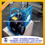 Hochdruck300bar luftverdichter-Hersteller