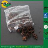 Травы Illicium Verum звездчатый анис для кулинарных использование лекарственных использовать