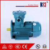 3 Vuurvaste AC van de Inductie van de fase Elektrische Motor met de Draad van het Koper