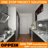 Cabinas de cocina de madera del pasillo de Brown HPL del proyecto de Oppein Asia (OP15-HPL02)