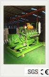 La alta eficiencia Syngas Conjunto de la generación de 50kw