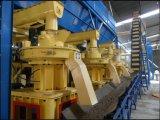 De gespecialiseerde Lopende band van de Korrel van de Biomassa
