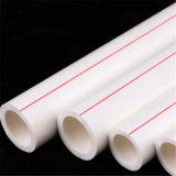 Chinese importiert Großhandels-PPR Berieselung-Rohr-eindeutige Produkte zum Verkauf