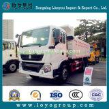Caminhão de descarga do Tipper de Sinotruk HOWO 6X4 371HP para a venda