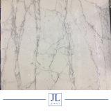 La parete bianca di marmo di marmo bianca italiana delle lastre di Bianco Calacatta Coutertops copre di tegoli le lastre composite