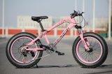 熱い販売の安いJiebaoの引きつけられる脂肪質のタイヤの自転車のバイクのマウンテンバイク浜のバイク